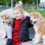 Akita and kids